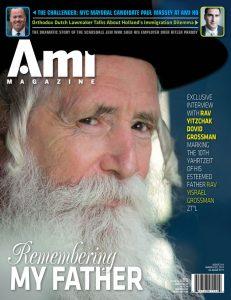 001_ami311_cover