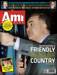 001_ami324_cover