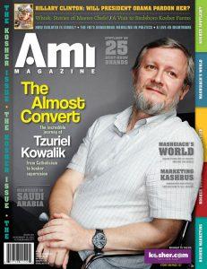 001_ami293_cover
