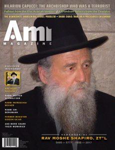 001_ami301_cover
