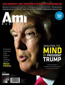 001_ami306_cover_v1