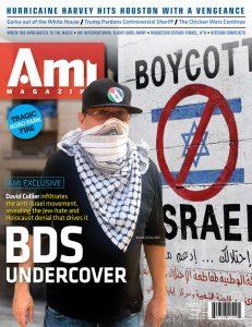 001_ami333_cover