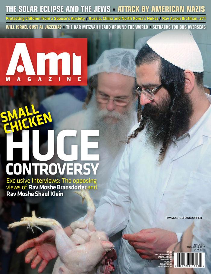 ami331_cover