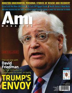 ami334_cover
